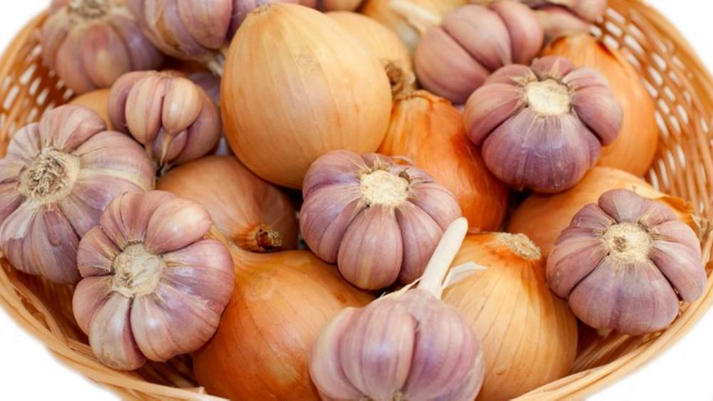Germeni si lastari - aliment viu, hrana terapeutica si regeneratoare